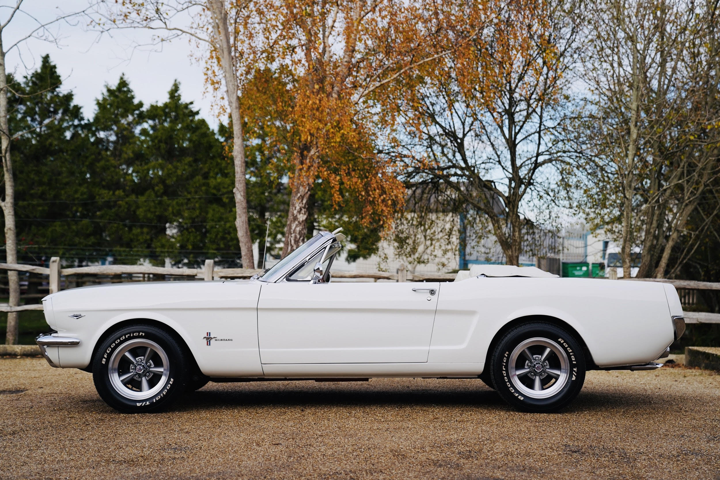 Mustang Hire Kent